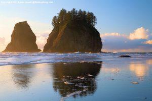 Oregon Coast | Cycle of Life Adventures