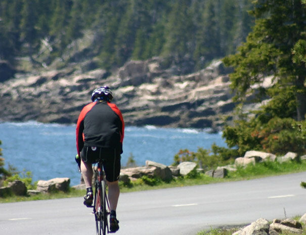 Cyclist in Acadia | Cycle of Life Adventures