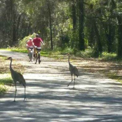 Florida Inverness Trail | FL Fundo Bike Tour