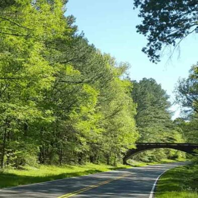 Natchez Trace Challenge Bike Tour | Cycle of Life Adventures