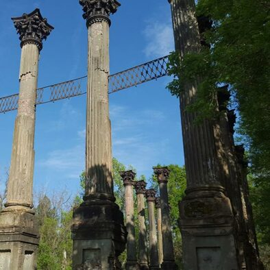 Natchez Trace | Windsor Ruins | Cycle of Life Adventures