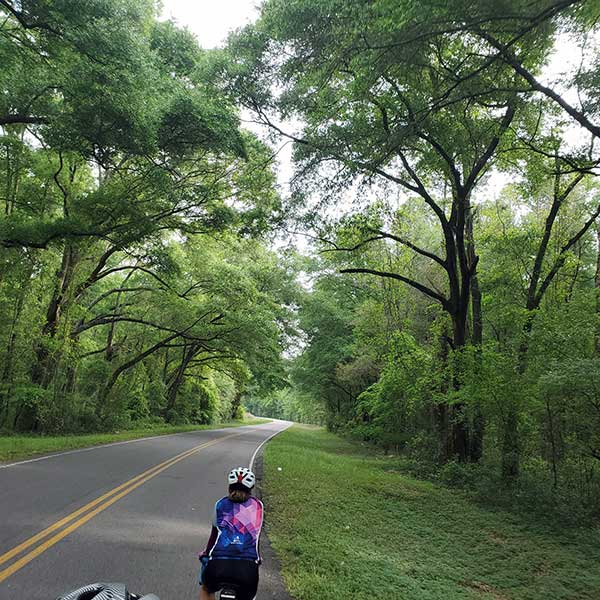 COLA | Day 42 - Madison to High Springs FL | Image 5